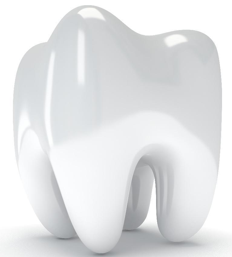 Illustration of tooth | Dentistry Burnaby BC